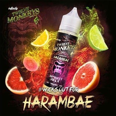 Twelve Monkeys - Shake & Vape Liquid - Harambae
